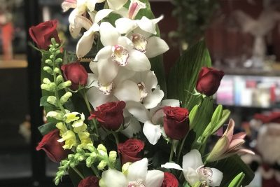 Pre order your Cymbidium arrangement