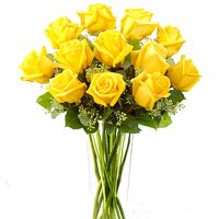 1 dz yellow roses