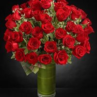 4 dz. red roses in a vase