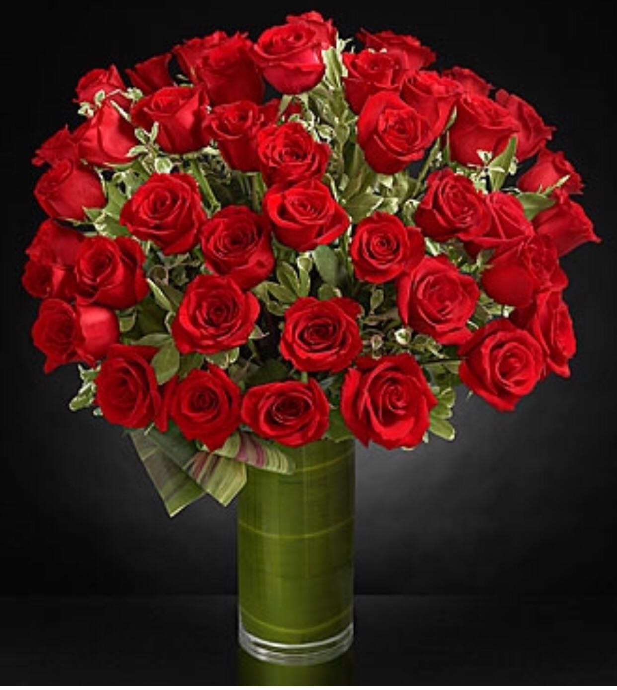 4 Dz Red Roses In A Vase Sunlight Flower Shop