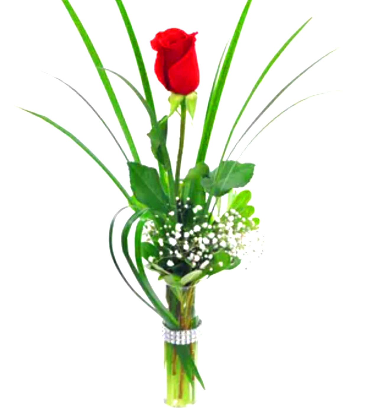 One single rose in a vase sunlight flower shop one single rose in a vase floridaeventfo Choice Image